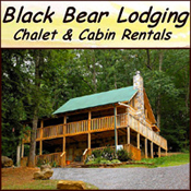Pigeon Forge Cabin Rental Black Bear Lodging