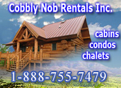 Pigeon Forge Cabin Rental Cobbly Nob